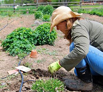 Rosemary Graff in the garden on her farm in Colorado.