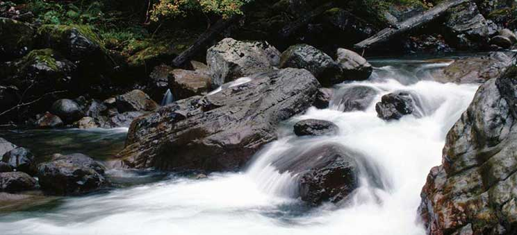 Photo: rushing river