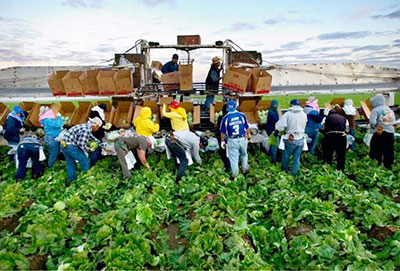 CA-ag-workers-web