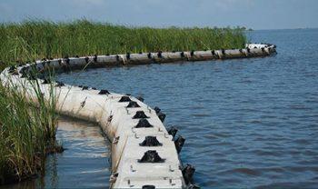 Shoreline control