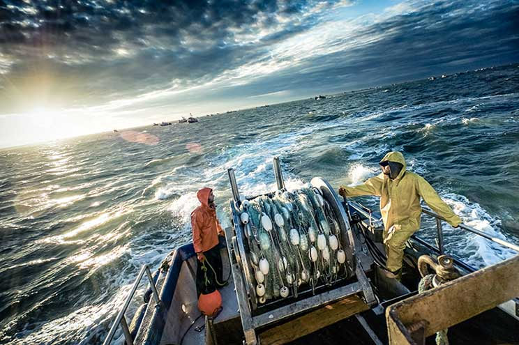 Northline Seafoods fishermen